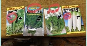 祖父母の家で使っている種たち〜冬野菜ver.〜