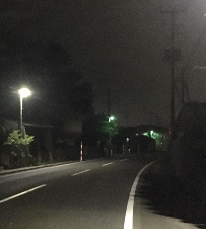 「街灯に集まる虫」