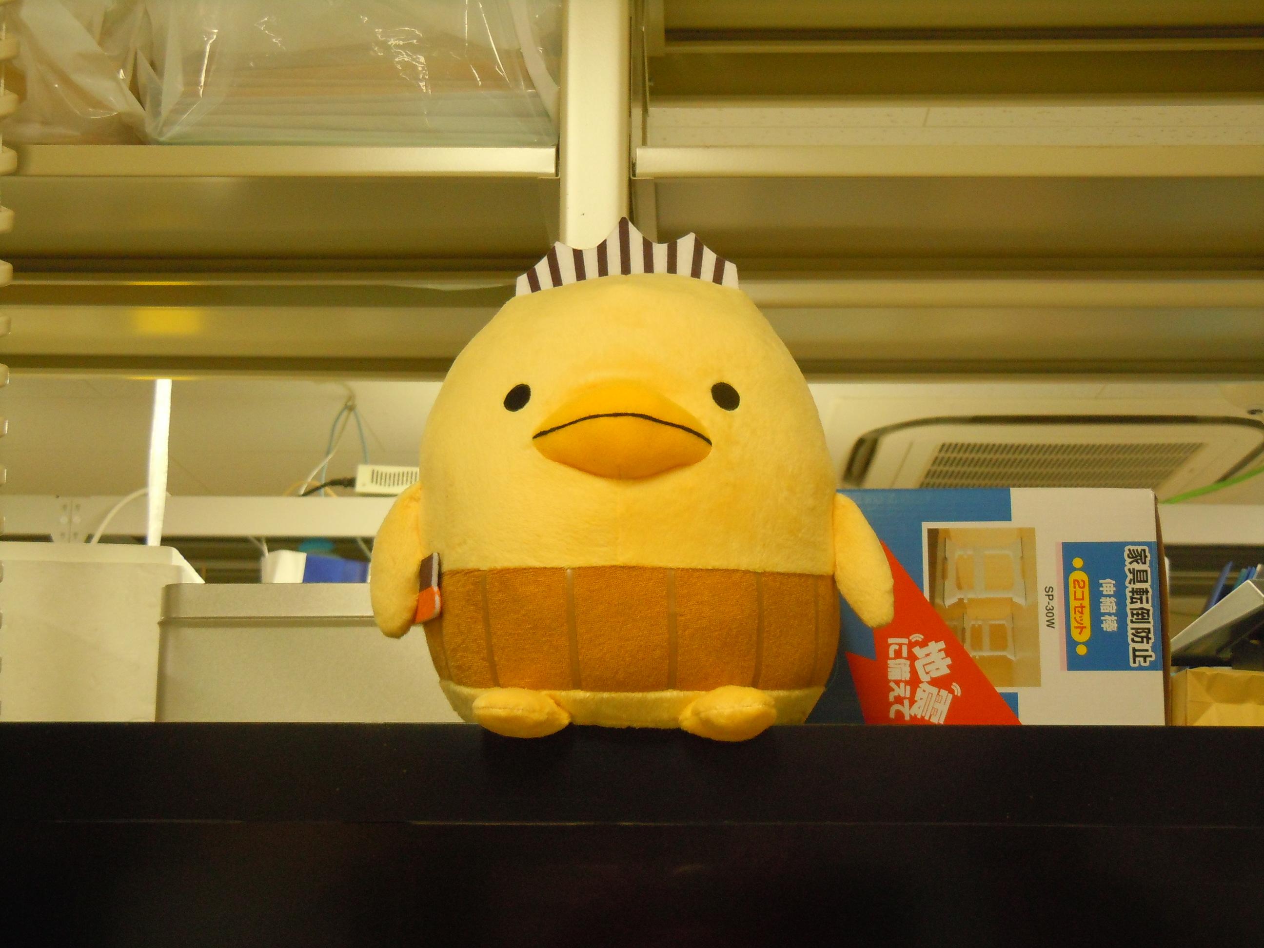 http://www.ige.tohoku.ac.jp/mirai/news/upload_items/201310/DSCN5016.JPG