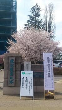 育種2013春.JPGのサムネール画像のサムネール画像