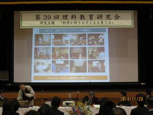 Tokiwa-Sony-1128-09.JPG