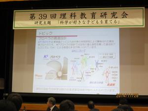 Tokiwa-Sony-1128-10.JPG
