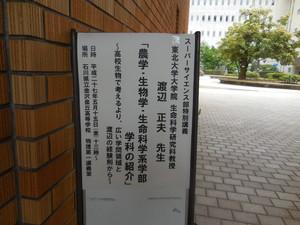 DSCN6975.JPG