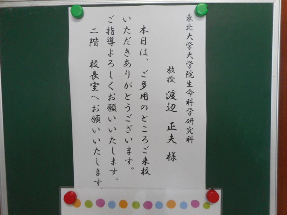 http://www.ige.tohoku.ac.jp/prg/watanabe/diary2/images/20170922144924-66366664f20faf1c295e6aba6363c9eaab77c51e.JPG