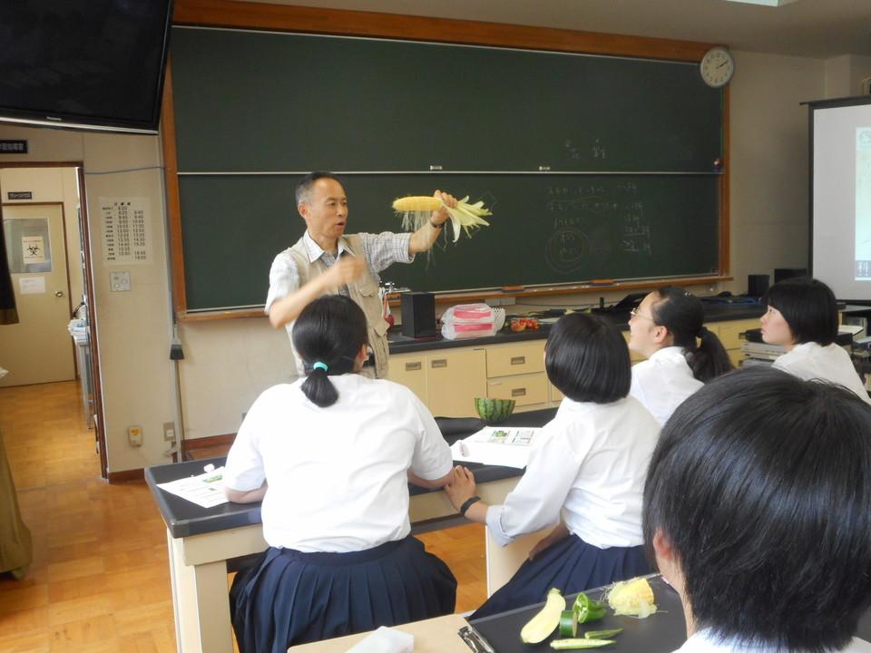 http://www.ige.tohoku.ac.jp/prg/watanabe/diary2/images/20190711181224-1e6925da4740448ad565d2dc02ce87872d947742.JPG