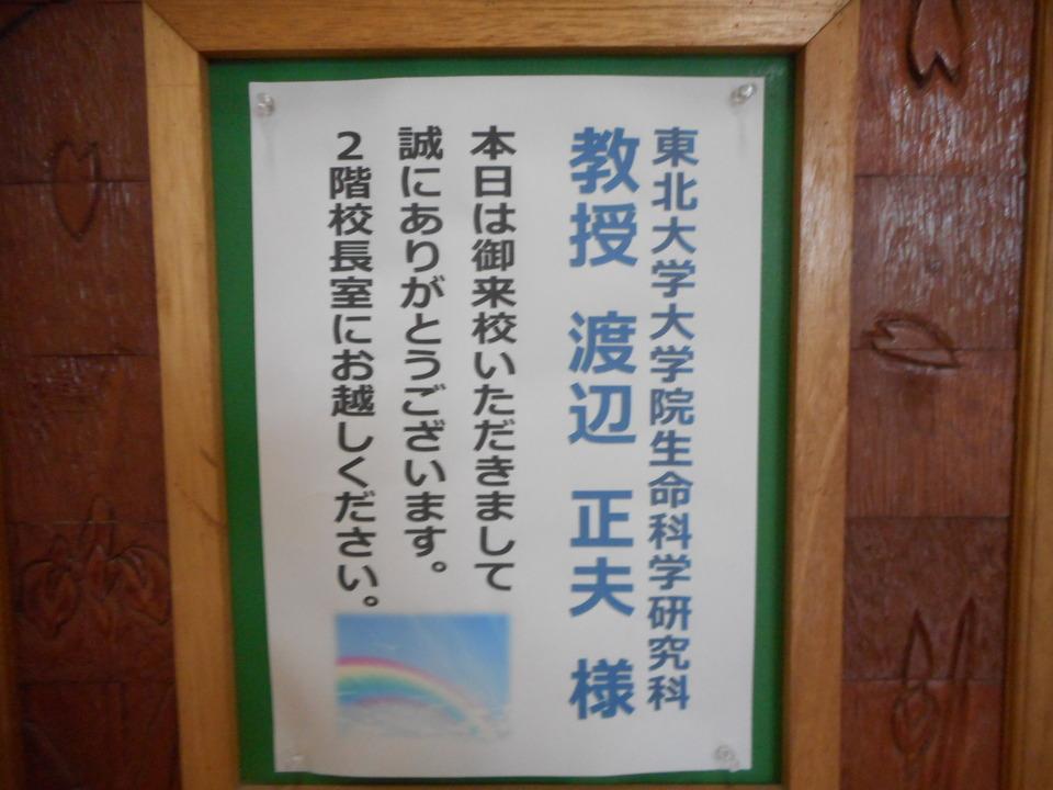 http://www.ige.tohoku.ac.jp/prg/watanabe/diary2/images/20190718155000-6c189497a208762f840837c7f4d1a3c57581c30f.JPG